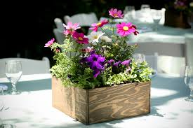 potted flower centerpieces